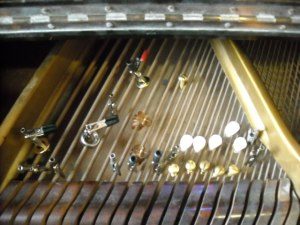 Bass Harp of Prepared Piano
